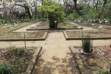 薬園保存園