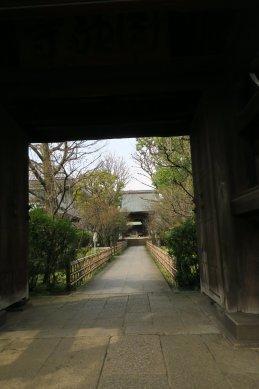 円融寺・山門から