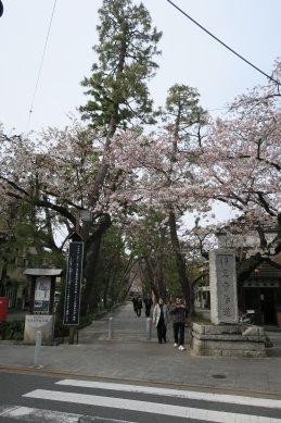 浄真寺参道