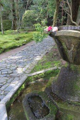 法然院・手水鉢から一筋の流れ