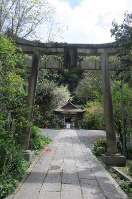 大豊神社・鳥居