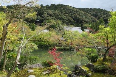 永観寺・放生池から見た多宝塔