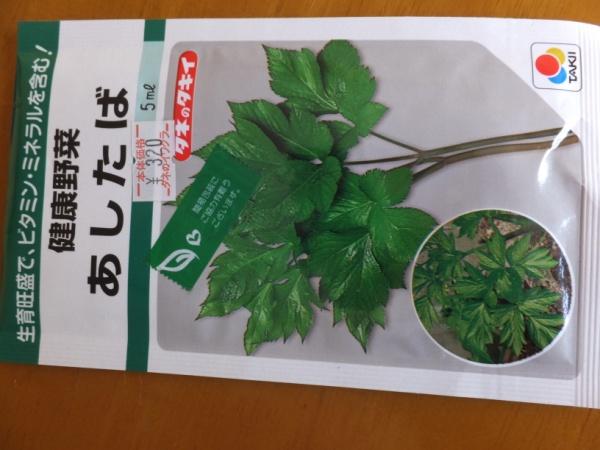 DSCF4608_1.jpg