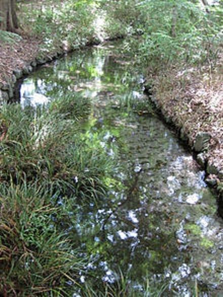 下鴨神社瀬見の小川