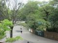 東京都美術館より上野公園