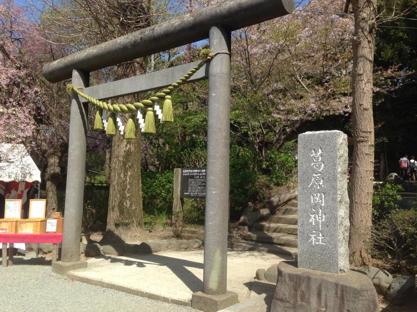 蔦原岡神社 (4)(1)