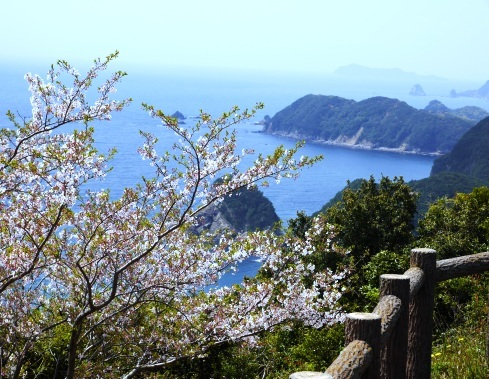 siohukiiwa_04150027.jpg