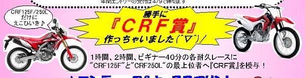 crf賞 17-3