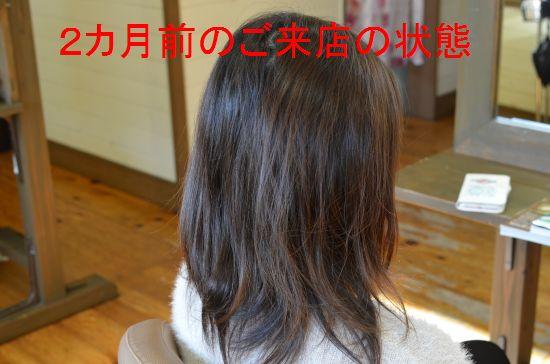 DSC_0048_6015_20170212170655001.jpg
