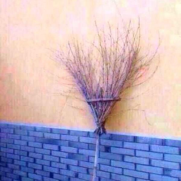 マン毛に見えるほうき