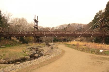 泉の森散策路a_1