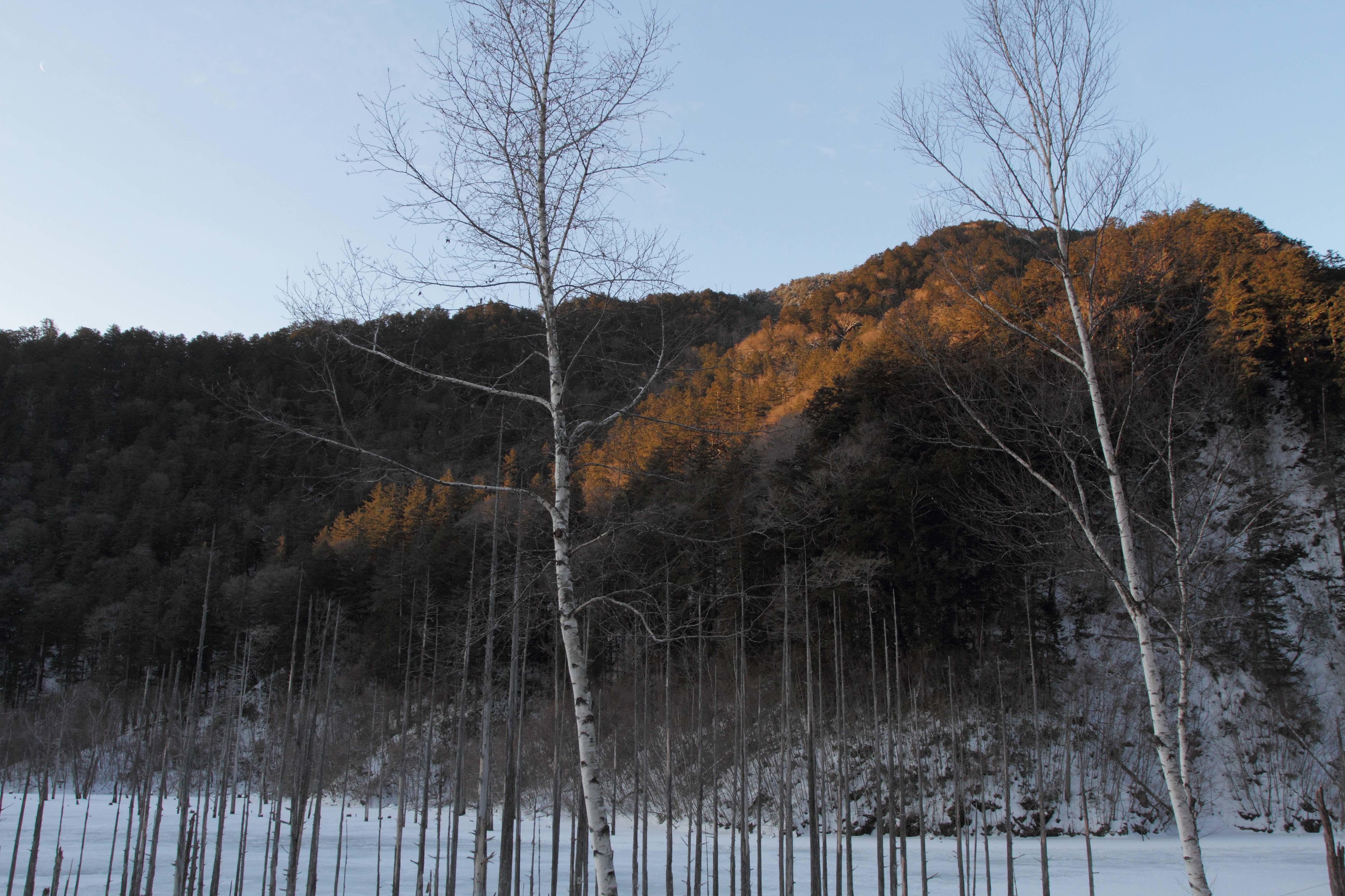 自然湖朝3