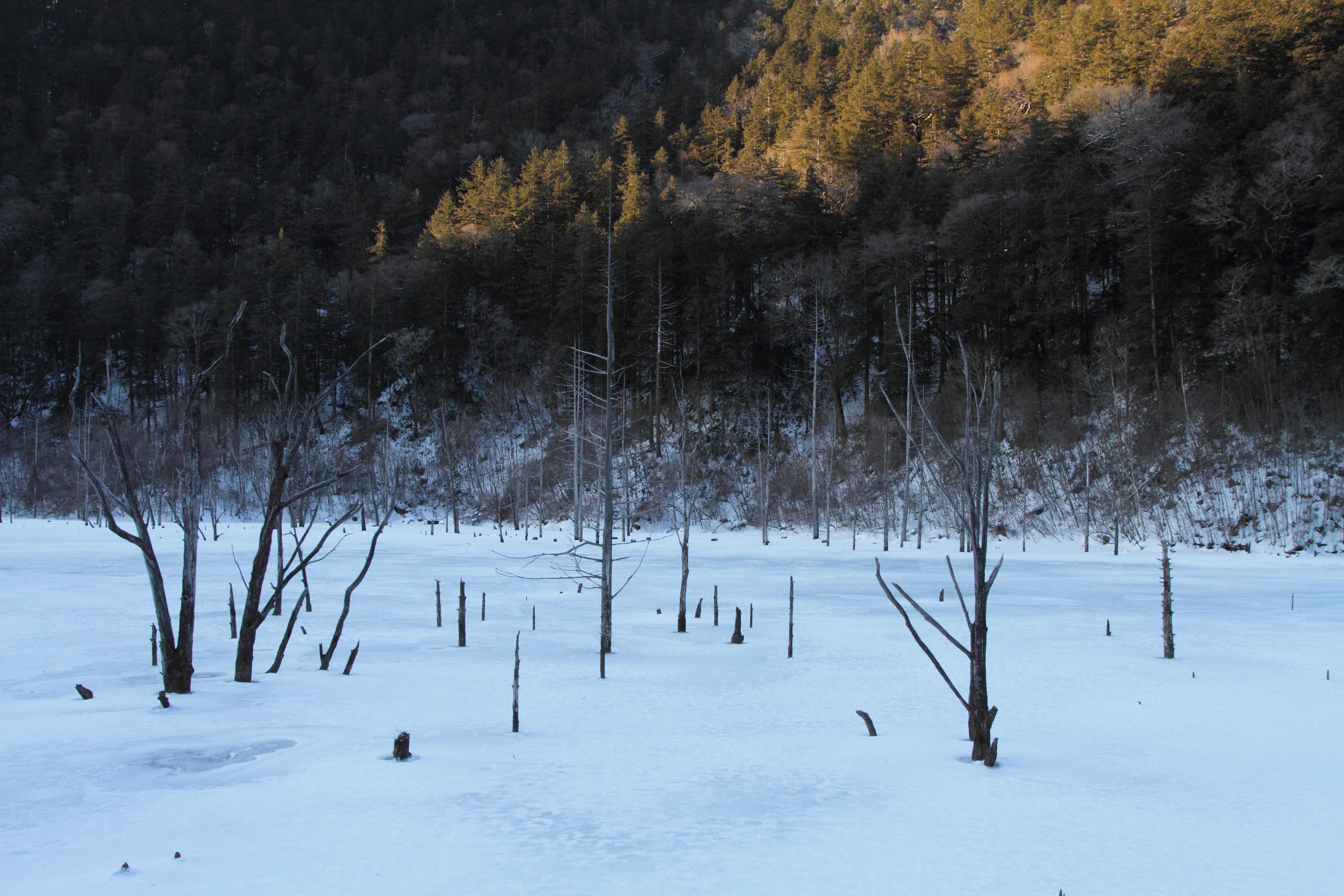 自然湖朝4