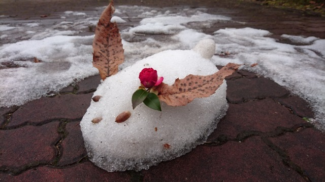 ④雪うさぎ640