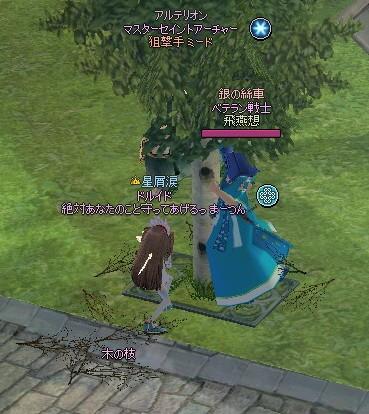 20170309_09_木の実集め