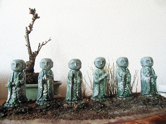 桜盆栽と室内鑑賞