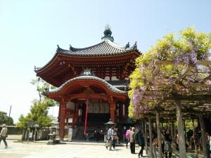 こ興福寺6 (2)