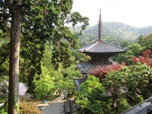 い一乗寺b (1)