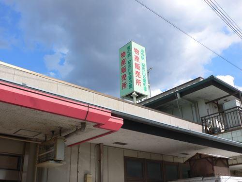 kinokawamanyou290327015_R.jpg