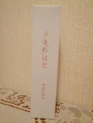 P1240834.jpg