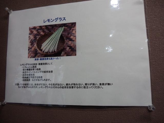 P3026215.jpg