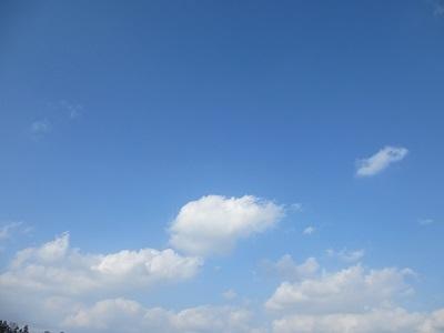 冬の山陰では貴重な青空です