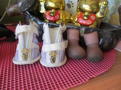 玄関でスタンバイ中の笑花の靴たち