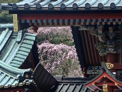 2017_0401静岡祭044