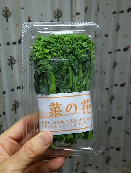 20170402用・菜の花
