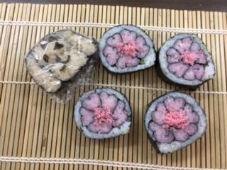 桜とトイプードルよみうり浦和③