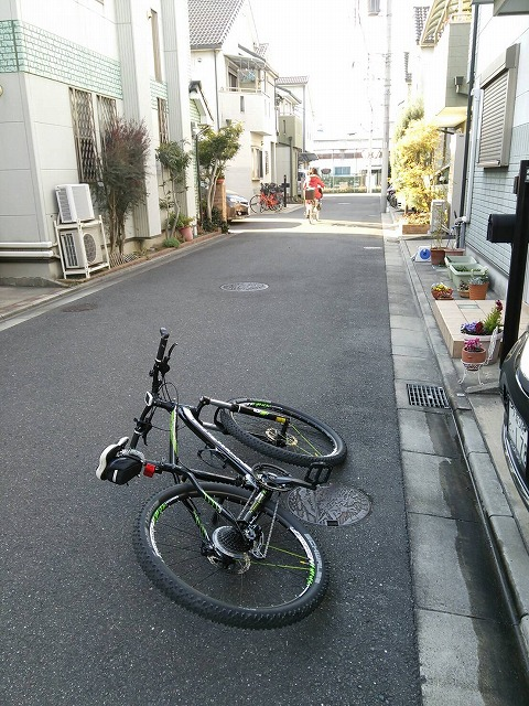 Image_06ff095.jpg