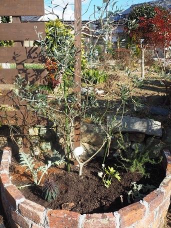 2つ目レンガ花壇