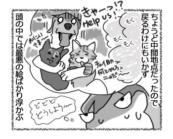 01032017_dog2.jpg