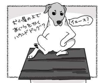 02042017_dog1.jpg