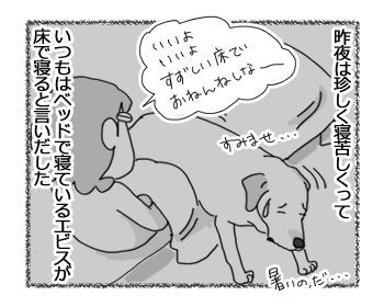 03032017_dog1.jpg