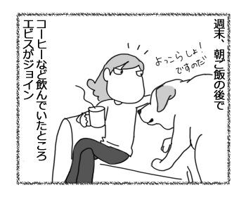 03042017_dog1.jpg