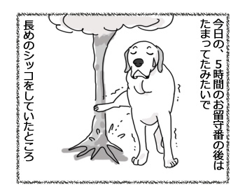 04032017_dog2.jpg
