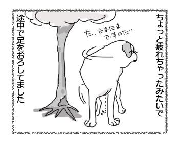 04032017_dog3.jpg