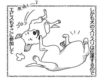 05042017_dog2.jpg