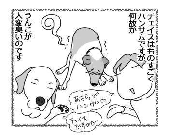 06032017_dog1.jpg