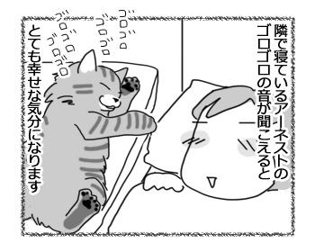 08032017_dog1.jpg