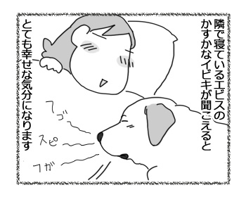 08032017_dog2.jpg