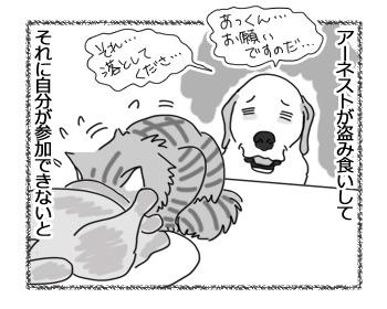 10042017_dog2.jpg