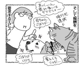 10042017_dog4.jpg