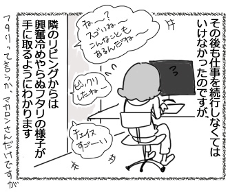 11022017_dog3.jpg