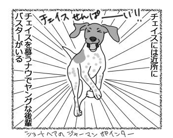 11042017_dog1.jpg