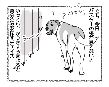 11042017_dog3.jpg
