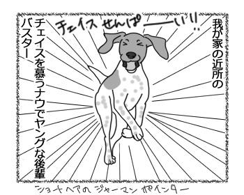 12042017_dog1.jpg