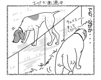 12042017_dog2.jpg