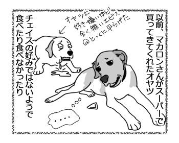 13032017_dog1.jpg